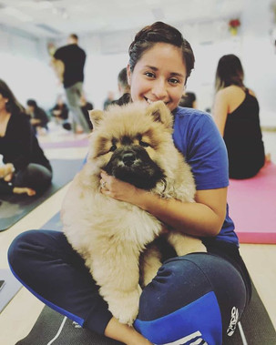 Got the chance to experience puppy yoga?