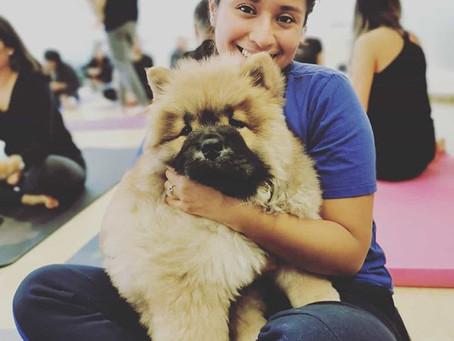 Puppy Yoga!