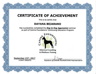 caninefoundations1.jpg