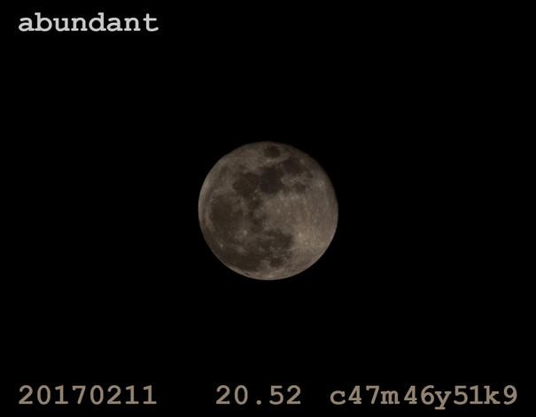 06.abundant_H6.jpg
