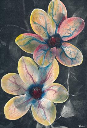 Organic flowers /4