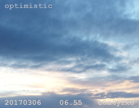 15.optimistic_H15.jpg