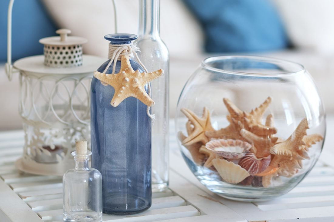 Starfish Collectables