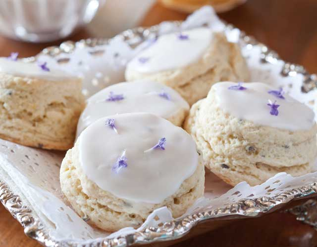 Lavender Cream Scones