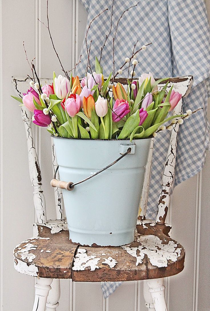 Bucket of Tulips on Chair