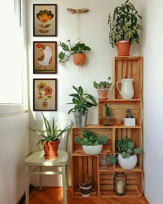 Gorgeous Plant Decor