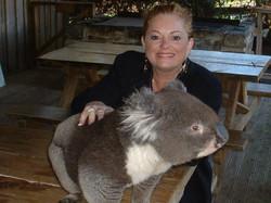 Banjo the Koala