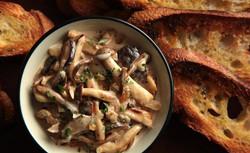 Mushrooms & Crusty Bread