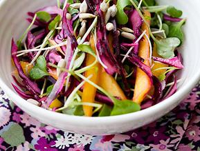 Red Cabbage & Mango Slaw