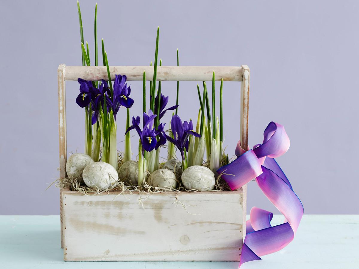 Iris Flowers & Eggs in Carrier