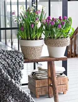 Purple Tulips in Rope Planters