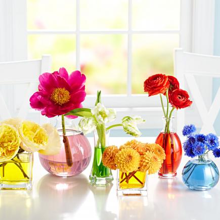 Colored Water Mini Florals
