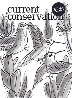 Cover 3 - flutter