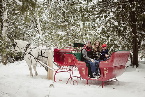 Small Sleigh Ride Gift Certificate