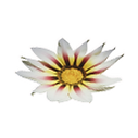Icon_white_flower.png