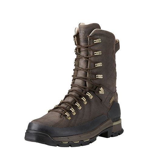 "Ariat Catalyst Defiant 10"" GTX 400g"