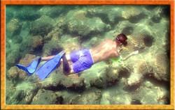 snorkler on first reef