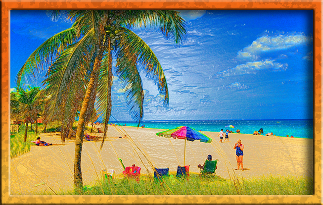 Artsy beach shot