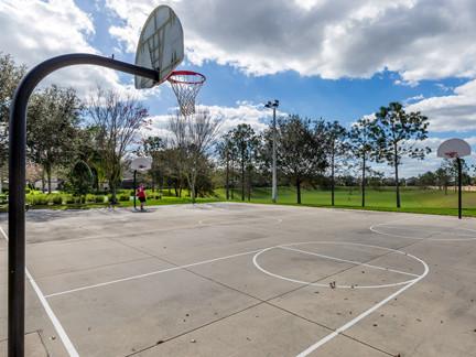 V-WH-5-Basketball.jpg