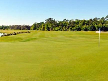 V-P-1-Golf.jpg