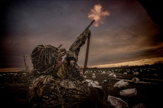 Hunter fires shotgun at snow geese