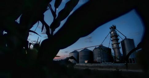 Grain bins at night in cornfield