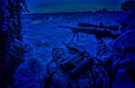 Calling predators night hunting