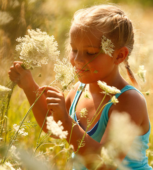 Young girl and Queen Anne's Lace