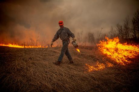 Control burn drip torch prairie fire