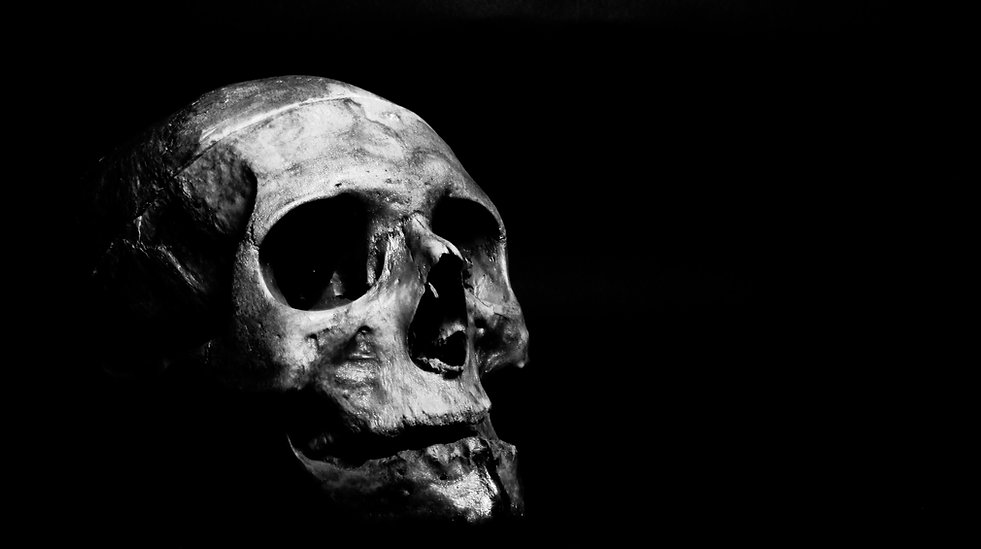 4k-wallpaper-black-and-white-bone-127018