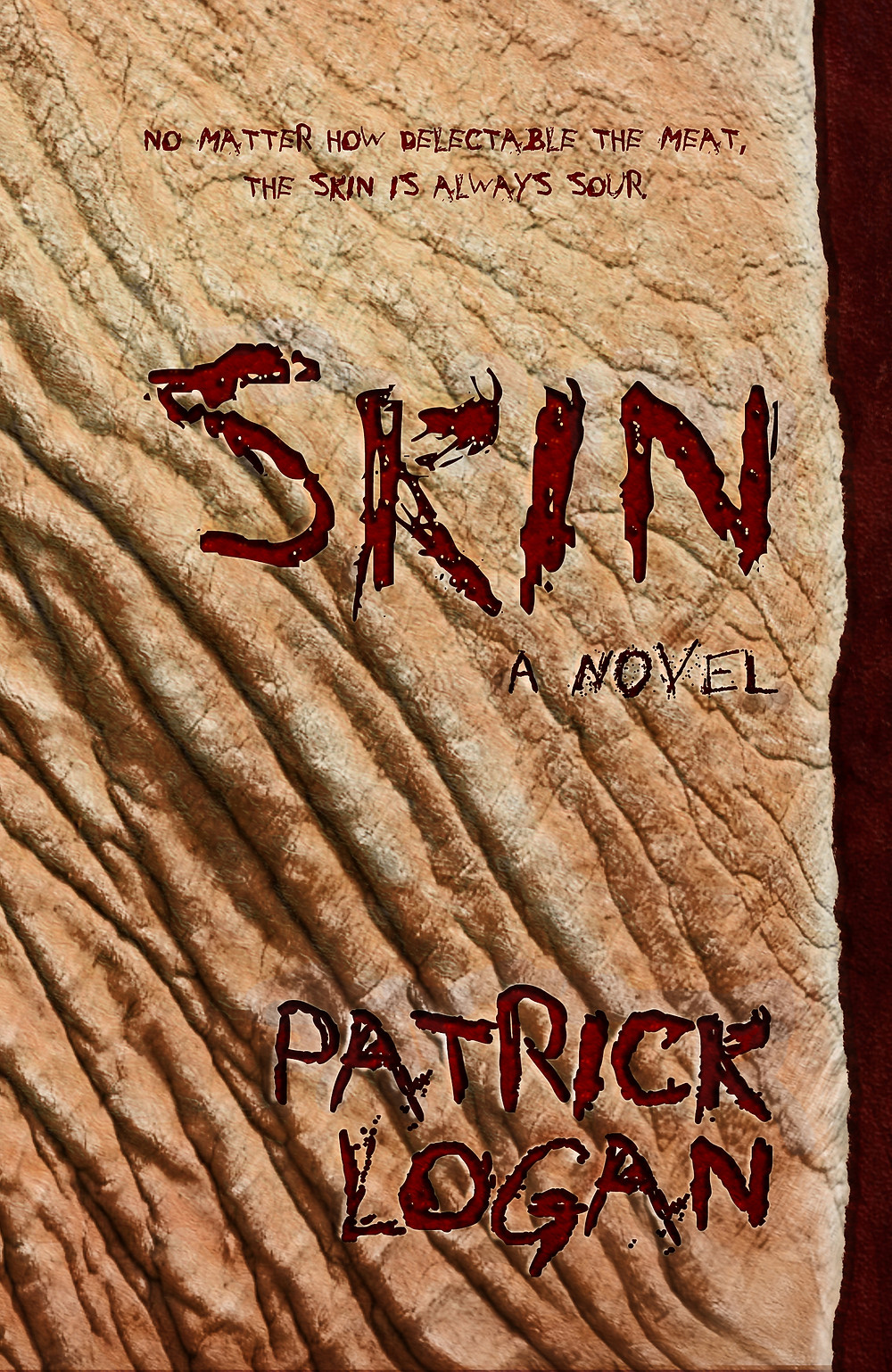 SKIN COVER-front.jpg