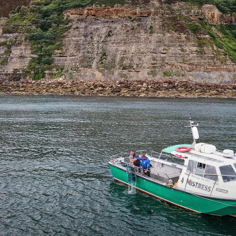 Raithwaite Sandsend launches weekly boat charter to experience lobster potting and wildlife safari