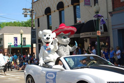 Jake Poodles® & Manny Cat® Parading!