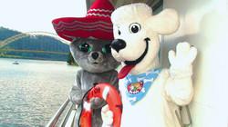 Manny Cat® and Jake Poodles® Boating