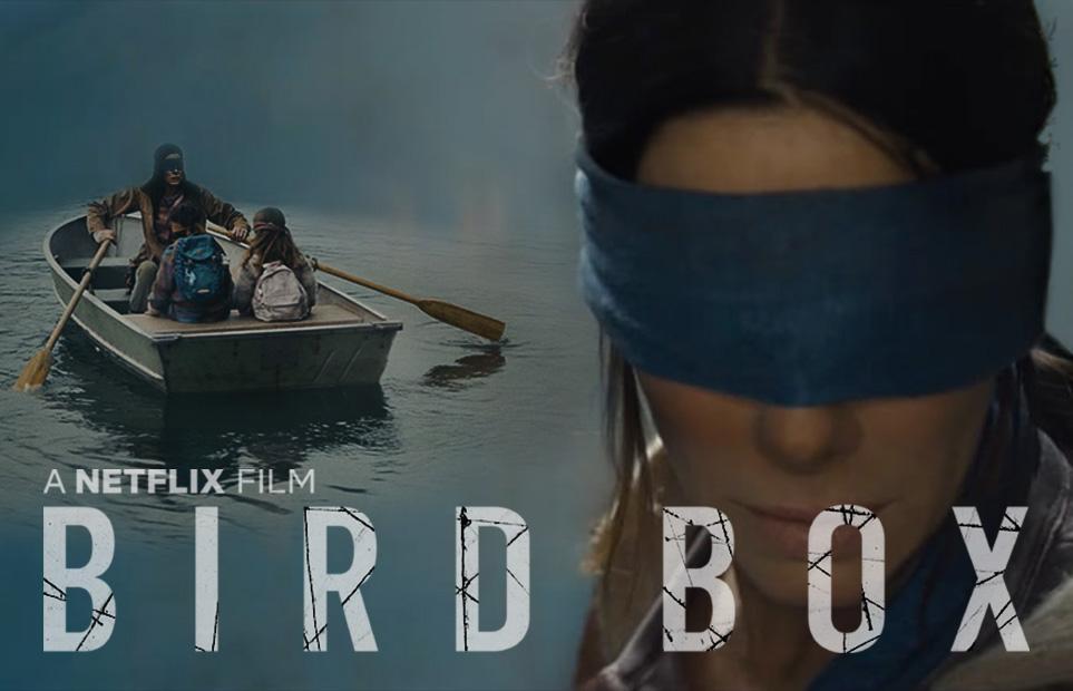 birdbox002