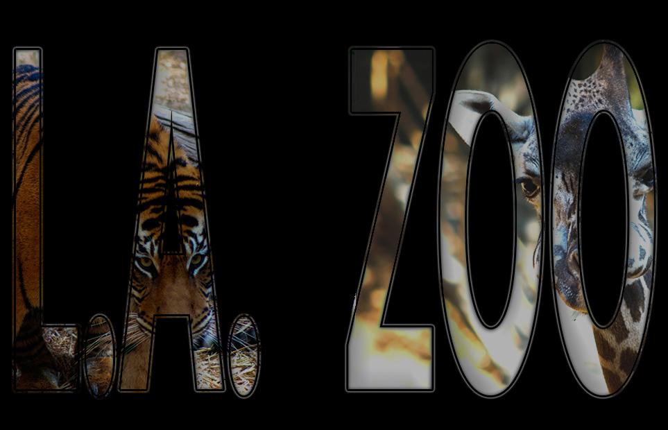 LAzoo_ 003