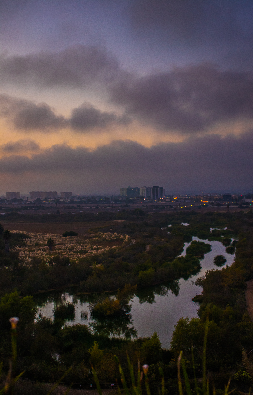 Wetlands_LA