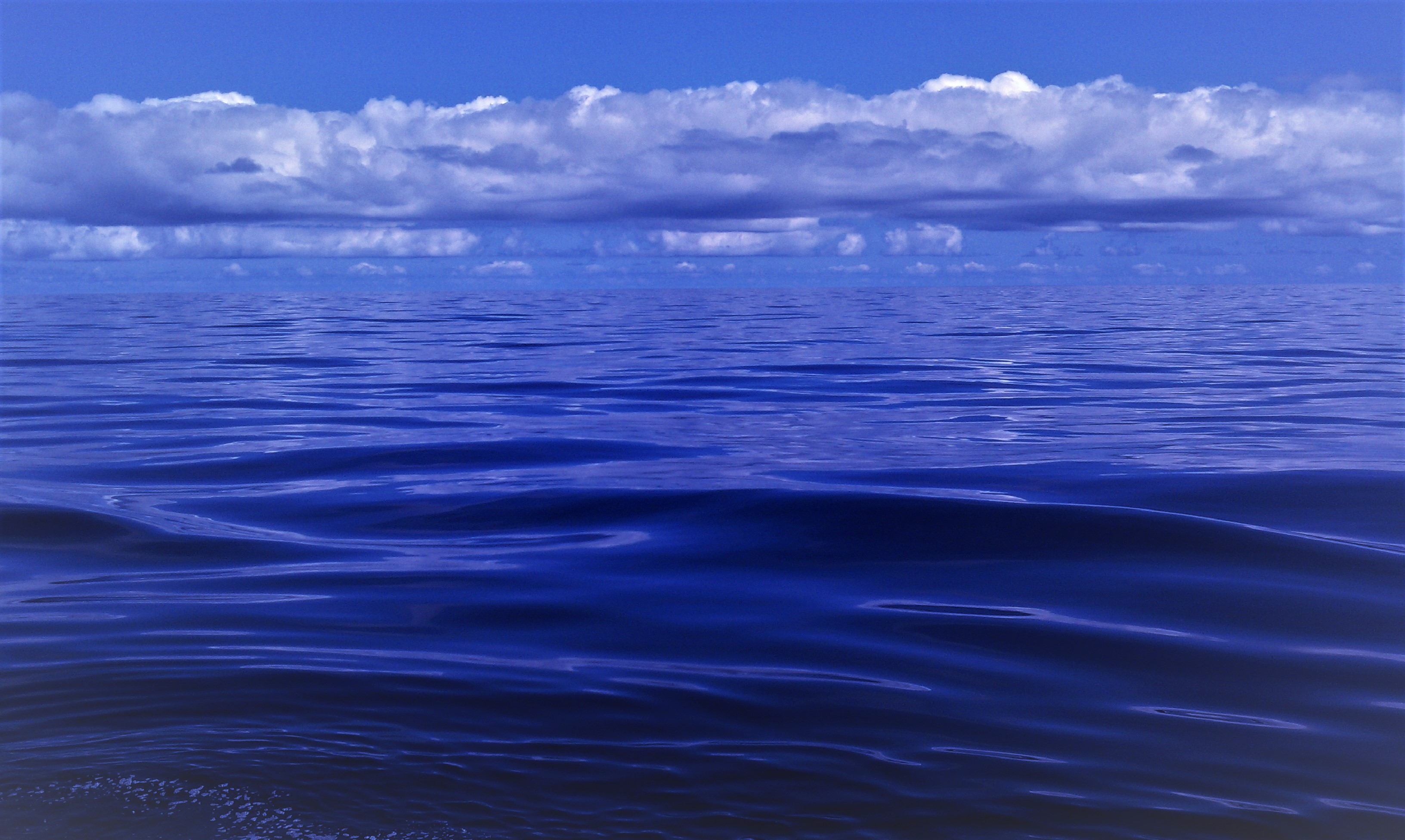 PacificOcean _Blue