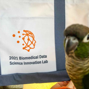 Challenges in Brain Analytics and Data Integration, a Look Back at the 2020-2021 BDSIL