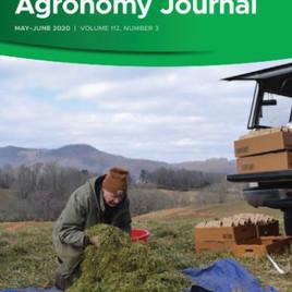 Establishment of gene pools for systematic heterosis exploitation in sugarcane breeding