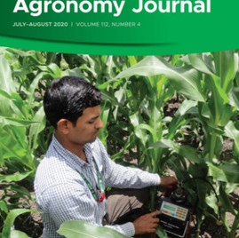 Comparison of different selection methods in the seedling stage of sugarcane breeding