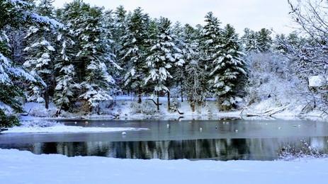 CLC Snow.jpg