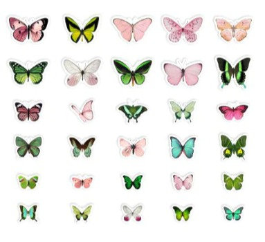 Butterfly clear stickers slide transfer embed in resin