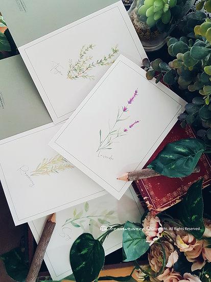 BOTANY BLANC Blank Cards Set