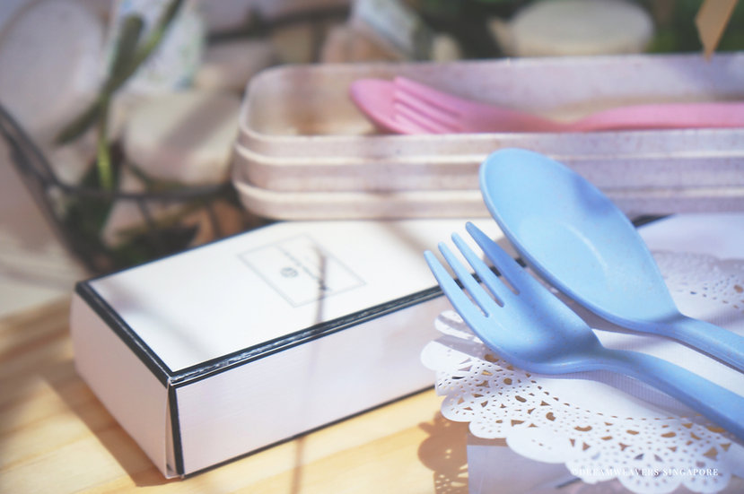 Biodegradable Cutlery Set (2 sets Blue & Pink)