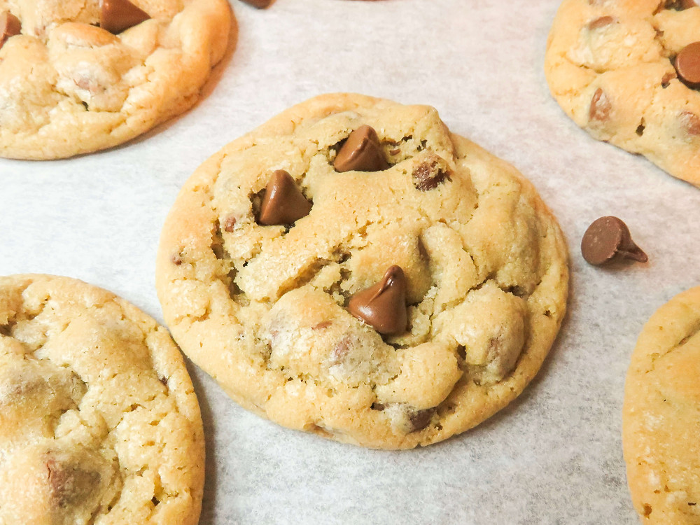 Gorgeous chocolate chip cookie close up!