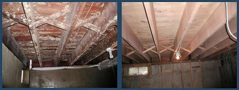 mold remediation example.jpg