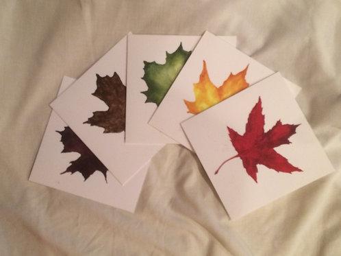 Leaf Notecards: Box Set of 5