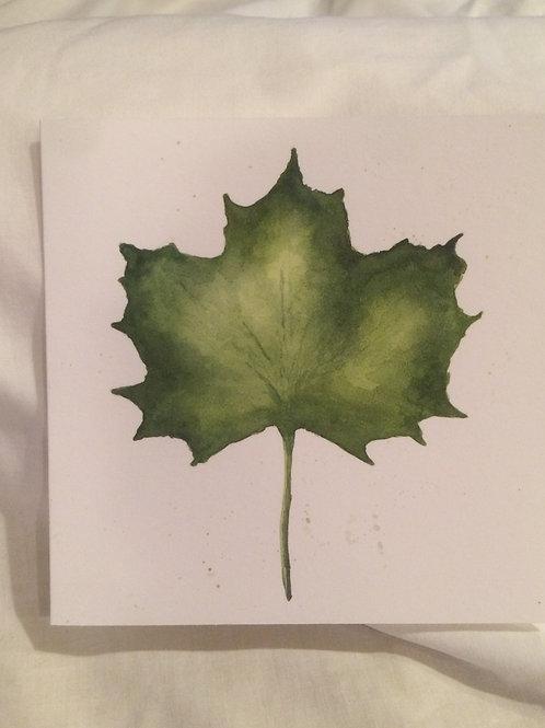 Green Leaf 6x6 inch Notecard