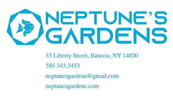 Business Card 1-01.jpg
